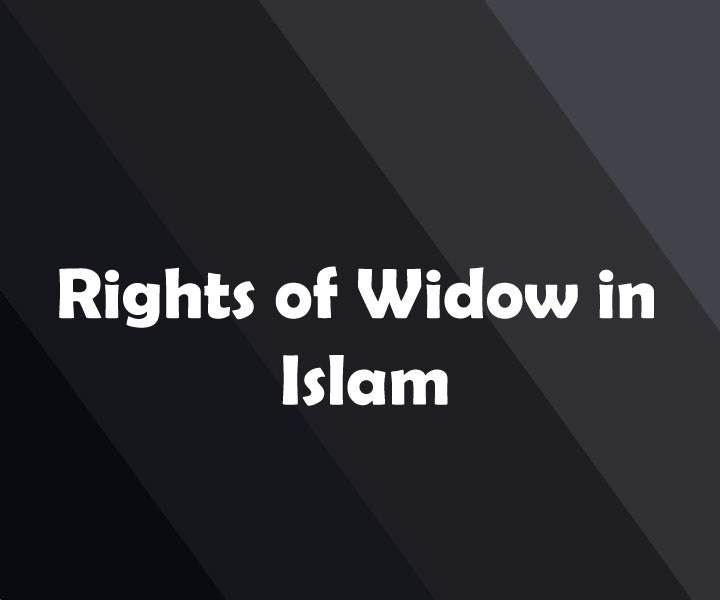 Rights of Widow in Islam